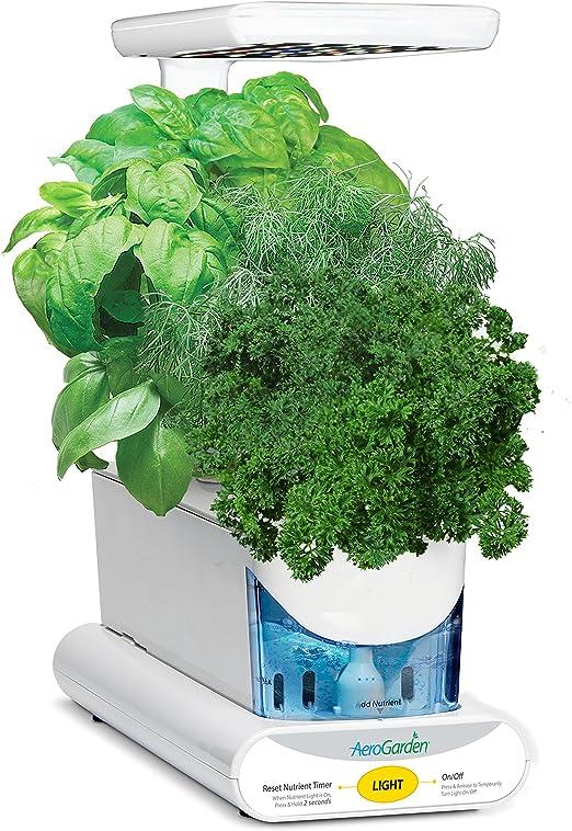 AeroGarden Sprout - Kit de cultivo interior smart garden, 3 ...