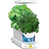 AeroGarden Sprout - Kit de cultivo interior smart garden, 3 capsulas, 10W, blanco