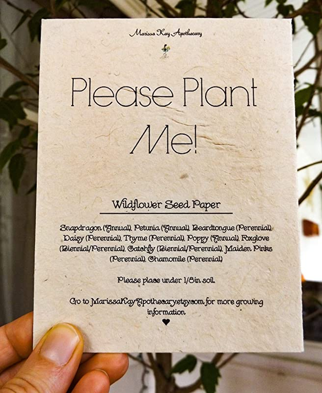 Hand Drawn Gift Card 6 Pack Rosemary Plantable Wildflower Seed Paper