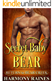 Secret Baby Bear (Return to Bear Creek Book 16)