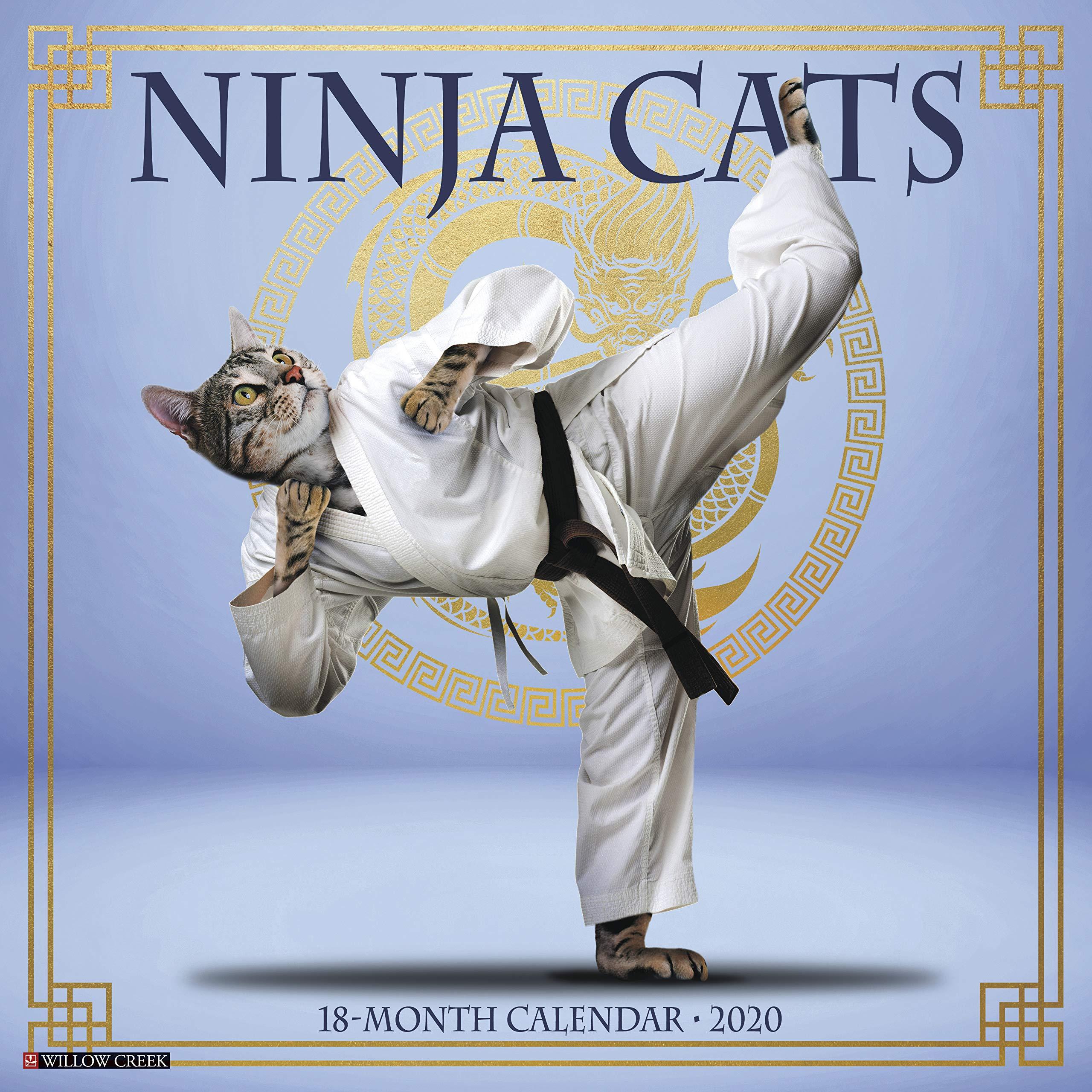 Amazon.com: Ninja Cats 2020 Wall Calendar (9781549207280 ...