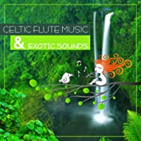 Celtic Flute Music & Exotic Sounds: Celtic Instrumental Sounds Collection, Soundscapes, Relaxation, Meditation, Exotic Sounds of Nature