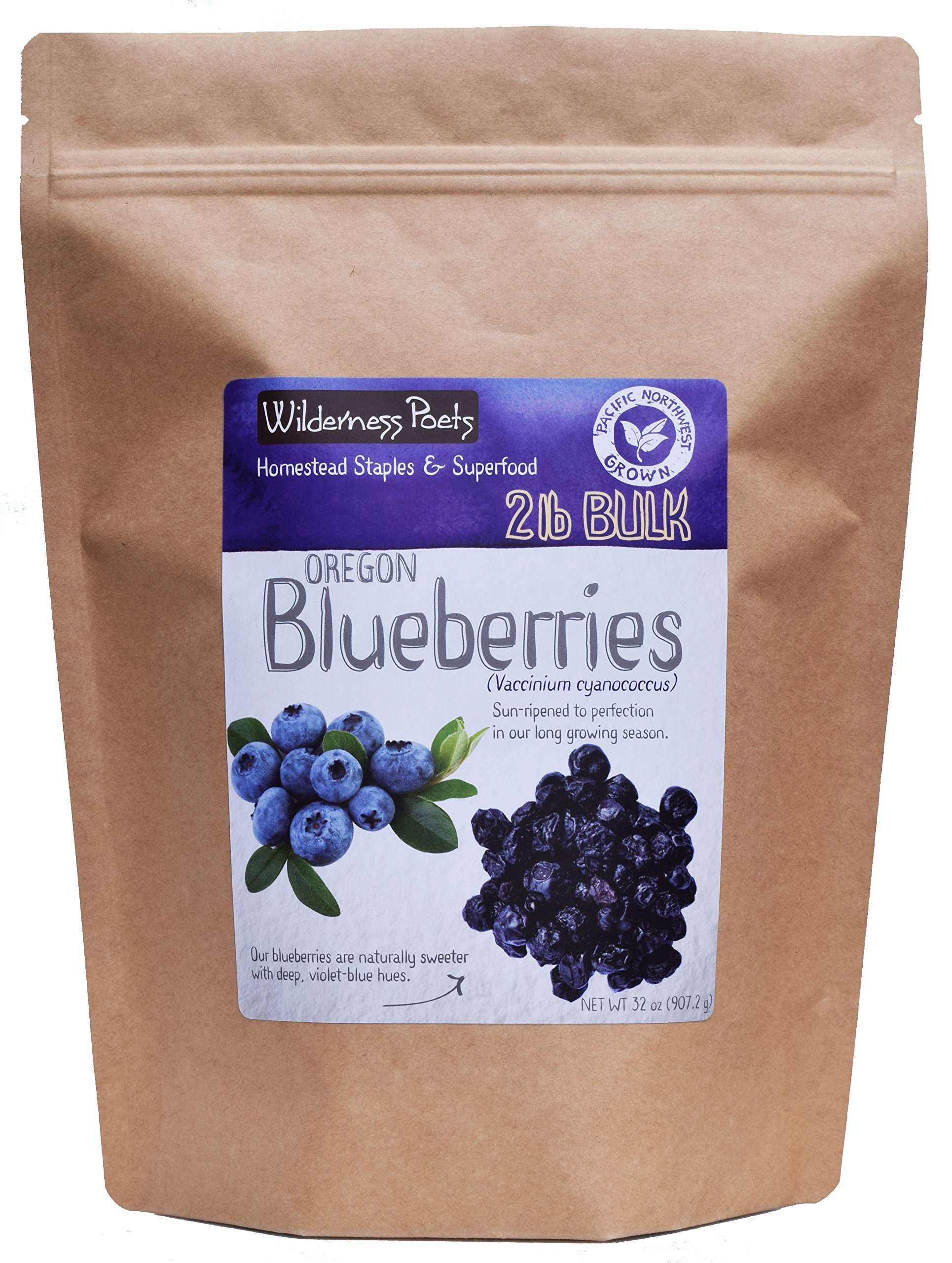 Wilderness Poets Oregon Blueberries (Sweetened with Apples) - Whole, Dried, Fruit - 2 Pound (32 Ounce)