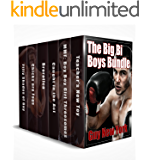 The Big Bi Boys Bundle: Six books–750pages–of hot Bisexual Male Erotica