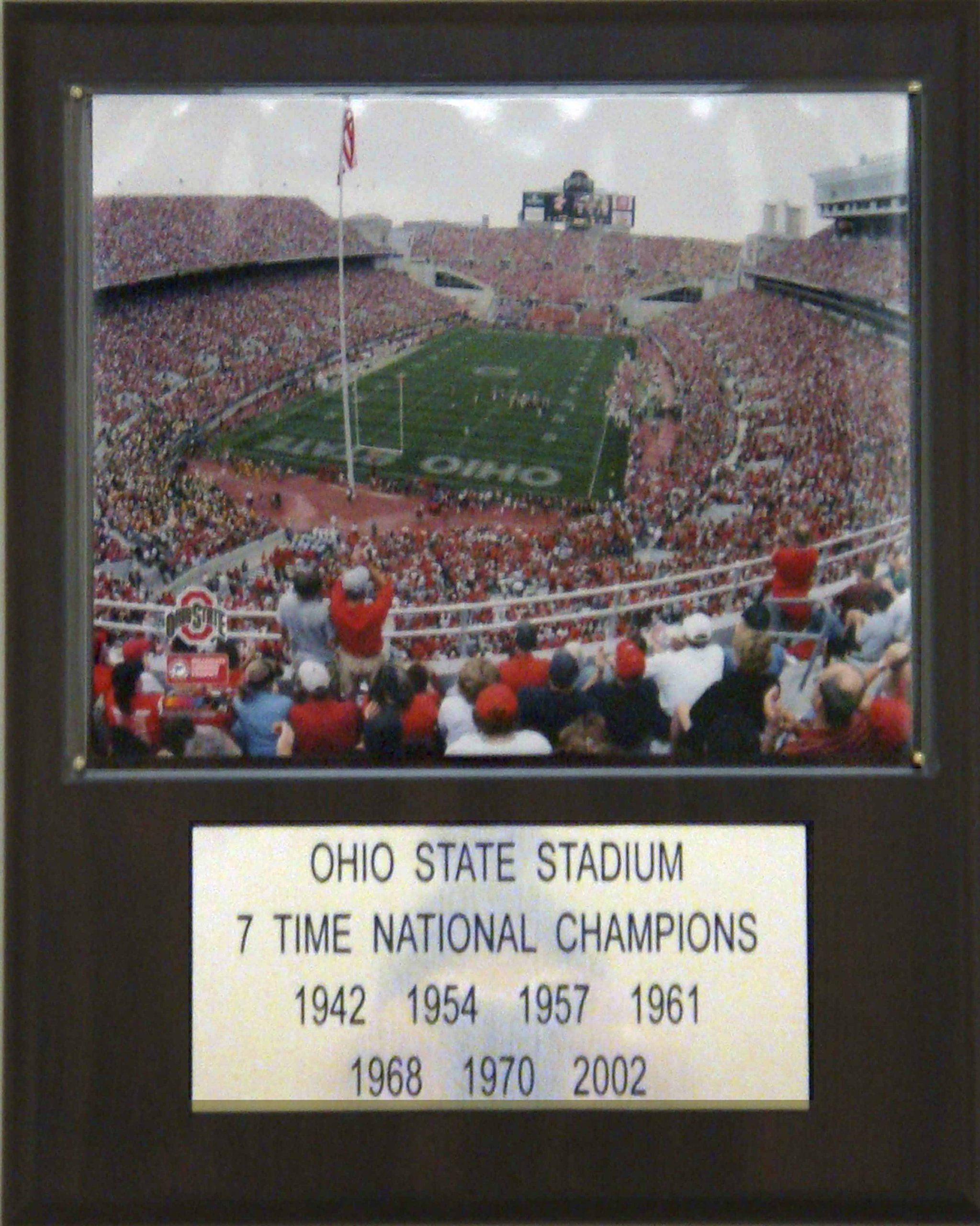 NCAA Football Ohio Stadium Stadium Player Plaque