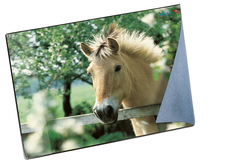 Camino Diseño im de vade, color Pferd im Diseño Rapsfeld d2b3b6