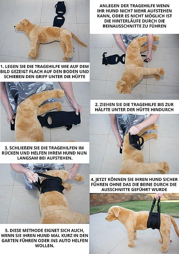 Nature Pet Hunde Tragehilfe Xs Schwarz Hunde Gehhilfe Hunde Rehahilfe Das Hilfsgeschirr FŸr Probleme An Der WirbelsŠule Der HŸfte Und Den Knien Ihres Hundes Haustier