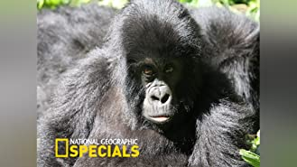 National Geographic Specials Season 1