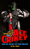 You Can't Get There From Here (The Epicish Adventures of Ace Crikey Book 2)