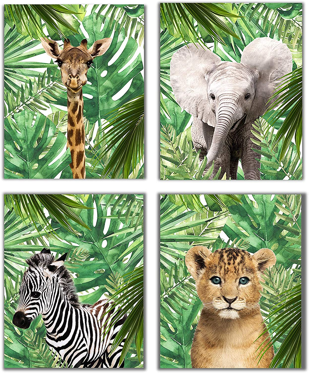 Designs by Maria Inc. Jungle Safari Baby Animals Nursery Decor Art | Set of 4 (Unframed) Wall Prints 8x10