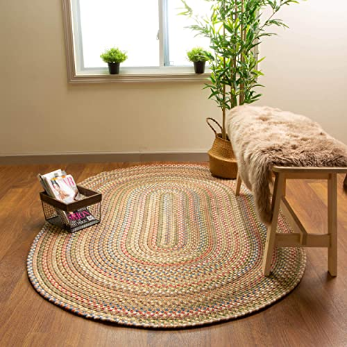 Super Area Rugs Roxbury American Made Braided Rug
