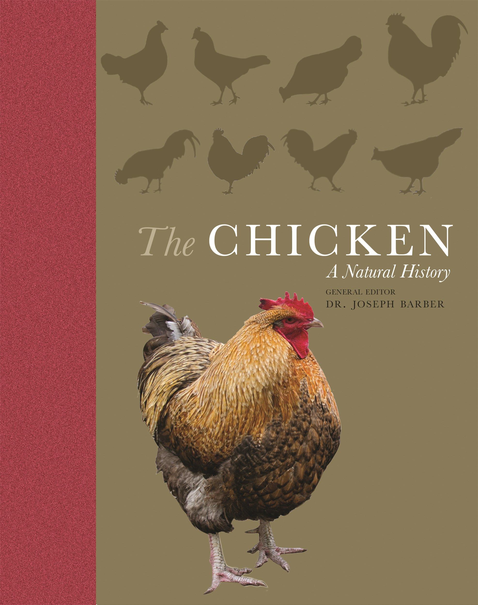 The Chicken: A Natural History: Joseph Barber: 9780691182469: Amazon ...