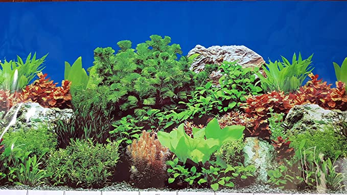 Amazon Com Karen Low 23 5 Height Double Sided Aquarium Background Blue Ocean Floor Underwater Sea Fish Tank Terrarium Wallpaper Decorations 48 L X 23 5 H Pet Supplies