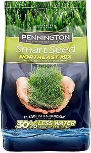 Pennington 100526638 Smart Northeast Mix Grass Seed, 3 lb