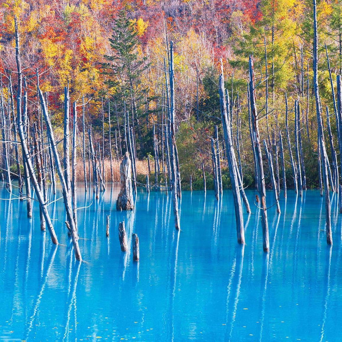 パワースポット Ipad壁紙 青い池 その他 スマホ用画像115457