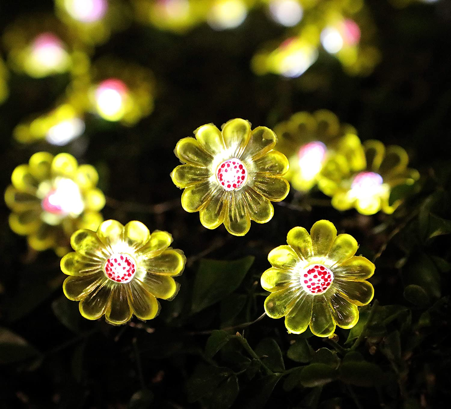 WSgift Solar Flower String Lights, 15.8 Ft 30 Cold White LED Outdoor Waterproof Daisy Fairy String Lights for Garden Yard Outdoor Decorations