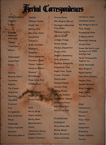 HERB CORRESPONDENCES WITCHCRAFT WICCA PAGAN Spell WITCHES MAGIC BOOK