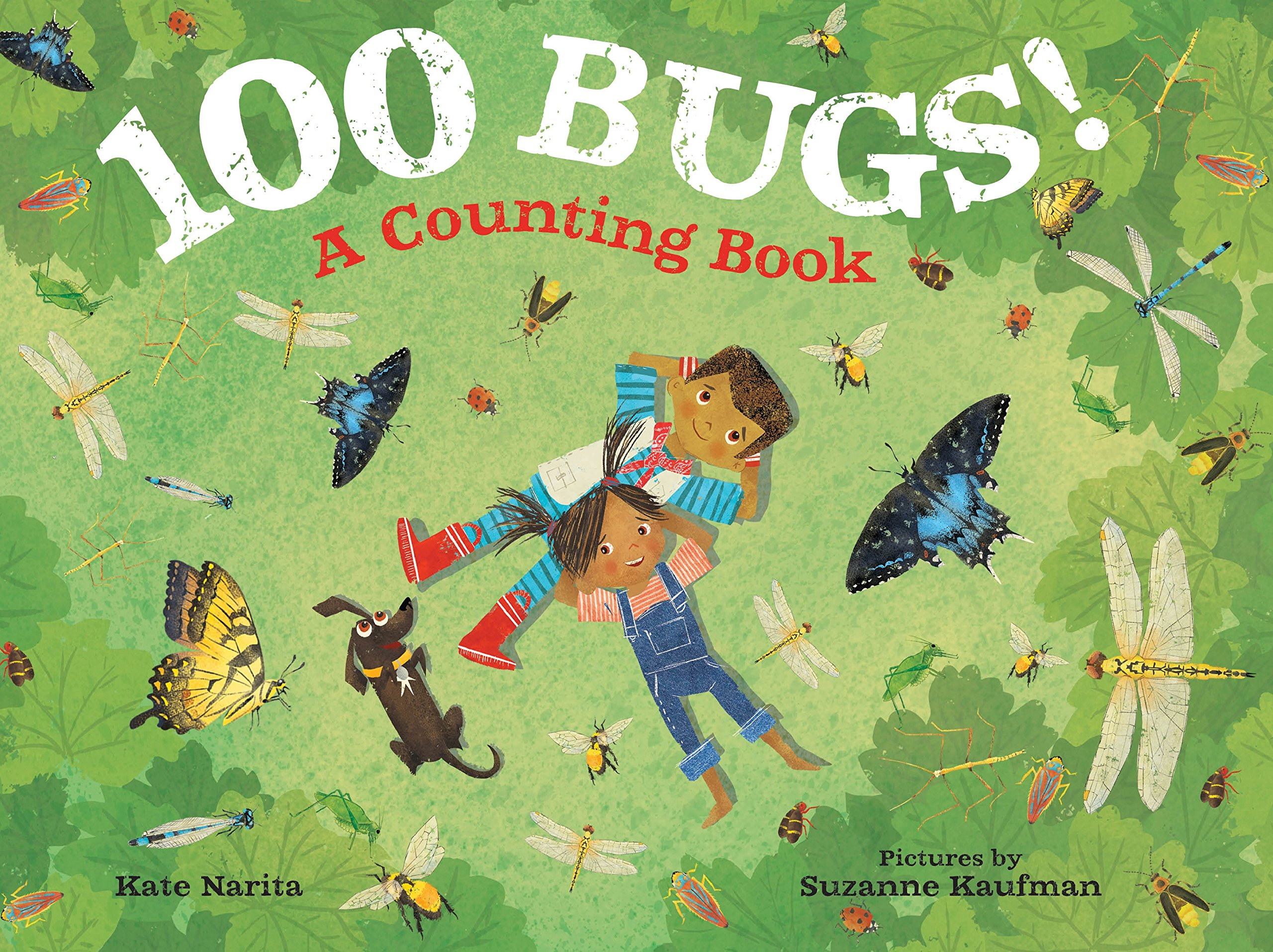 100 Bugs!: A Counting Book: Narita, Kate, Kaufman, Suzanne: 9780374306311:  Amazon.com: Books