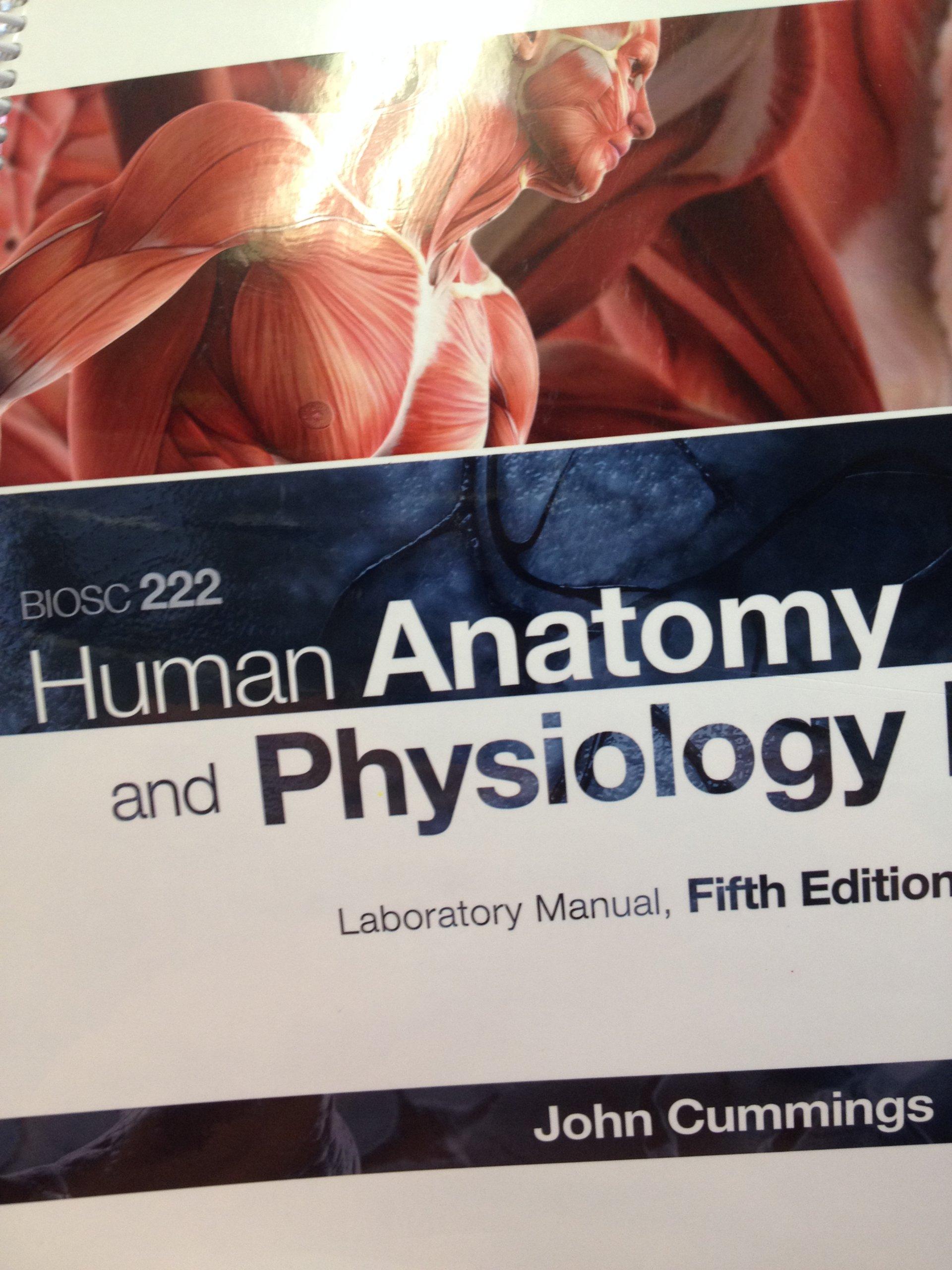 Fantastic Human Anatomy And Physiology Lab Manual 5th Edition ...