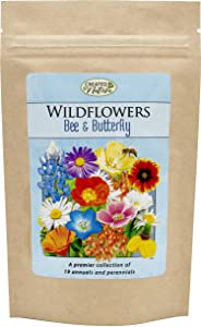 Bee & Butterfly Wildflower Seed Mix - Over 30,000 Premium Seeds - by 'createdbynature'