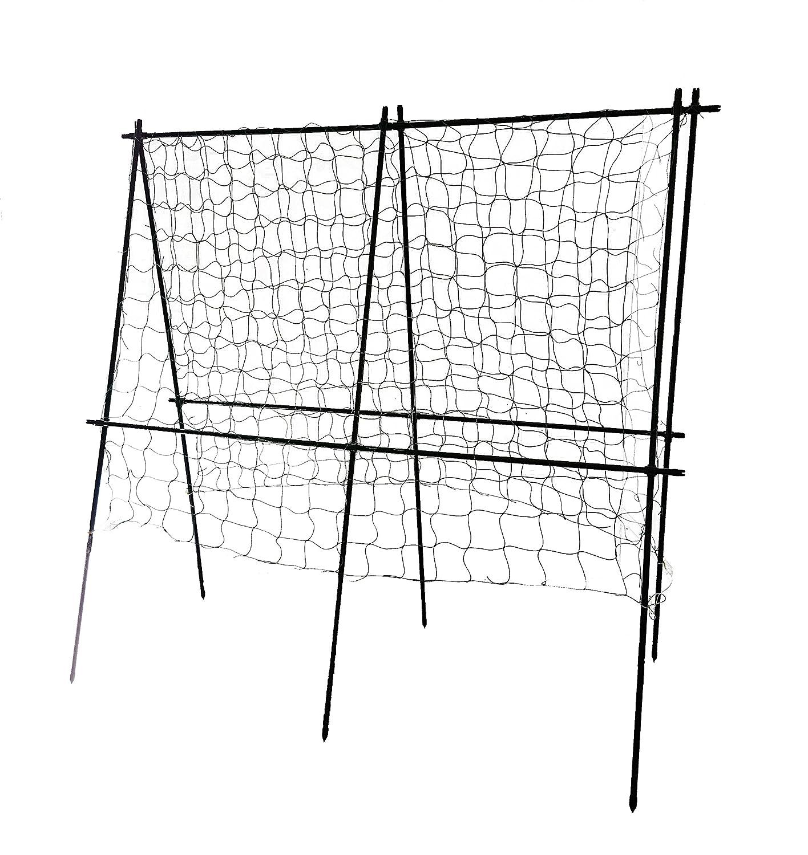 Fantastisch Stangenbohne Klettergerüst Zeitgenössisch - Rahmen Ideen ...