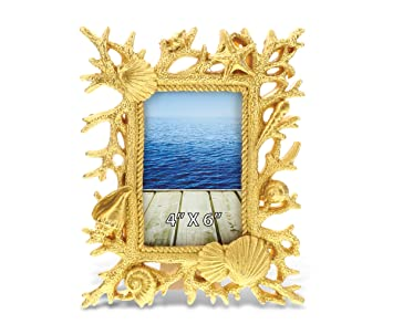 Amazoncom Cota Global Resin Sea Coral 4 X 6 Picture Frame Back