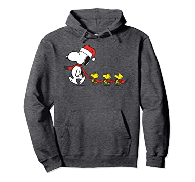 9847e14ab90 Unisex Peanuts Snoopy and Woodstock Holiday Hoodie 2XL Dark Heather