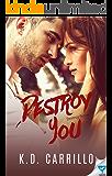 Destroy You (Destroy Series Book 3)