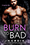 Burn So Bad (Into The Fire Book 3) (English Edition)