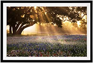 Renditions Gallery Morning Meadow Sunrise Pictures Scenic Art Framed Landscape Painting Nature Photograhy Canvas Prints Wall Decor, Black