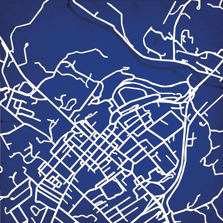 Amazon Com Washington And Lee University Campus Map Art 24 Wood