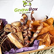 Gnaw Box – Nature Gnaws 100% Natural Dog Chew Subscription Box: Large & Medium Dog Breeds