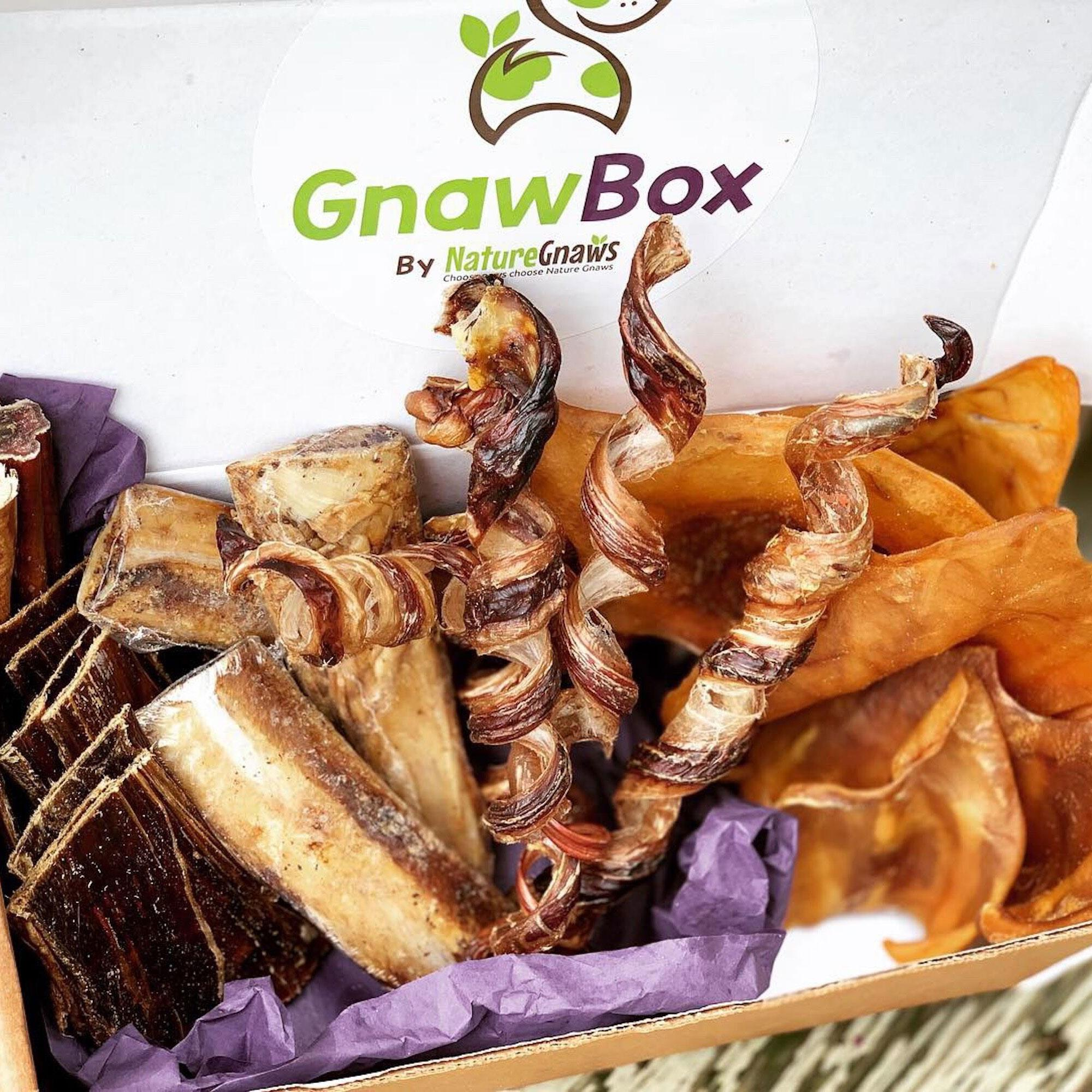 Gnaw Box - Nature Gnaws 100% Natural Dog Chew Subscription Box: Large & Medium Dog Breeds
