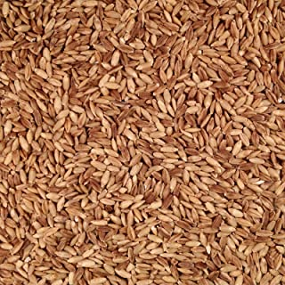 product image for Grain Place Foods Non-GMO Organic Hull-less eBarley 25lb Bag