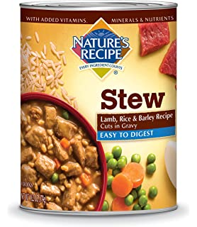 Natures recipe canned dog food for adult dog easy to digest natures recipe wet dog food cuts in gravy forumfinder Choice Image