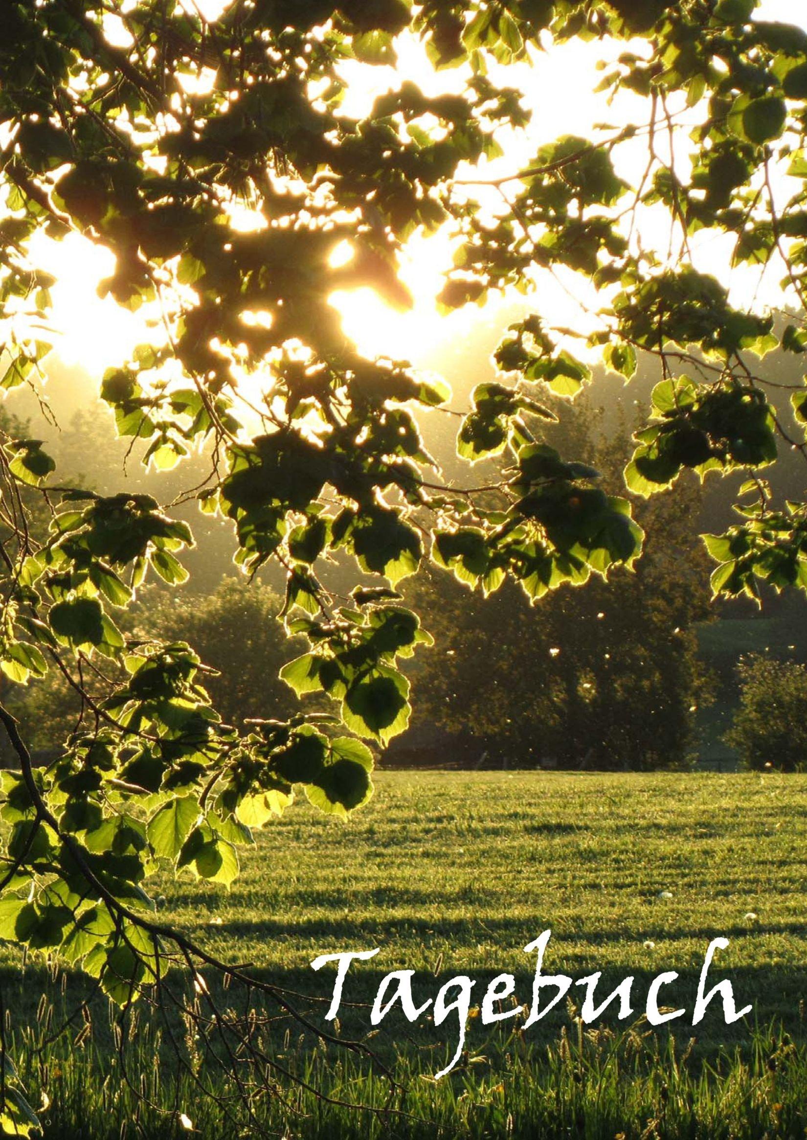 TageBuch A4 - Blätter in der Abendsonne: Viel Platz für dein Leben - liniert - Notizbuch - Geschenkbuch