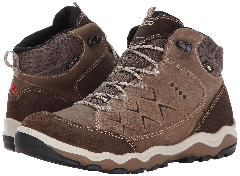 ECCO Women's Ulterra High Gore-Tex Hiking Boot B01M9FJMT0 39 EU / 8-8.5 US|Birch/Navajo Brown