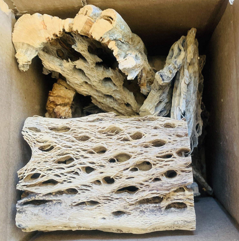 12-8 Crafts Shrimp Biofilm Fish Aquariums Pets Isopods Plants 1 lb Pound Scraps 16 oz Cholla Wood Pieces
