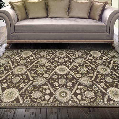 Superior Chandler Collection Area Rug, 8mm Pile Height with Jute Backing, Beautiful Floral Lattice Pattern, Fashionable and Affordable Woven Rugs – 8 x 10 Rug