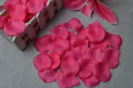 Amazon wento 2000pcs hot pink silk rose petals wedding flower wento 2000pcs hot pink silk rose petals wedding flower decorationpart wedding decoration mightylinksfo
