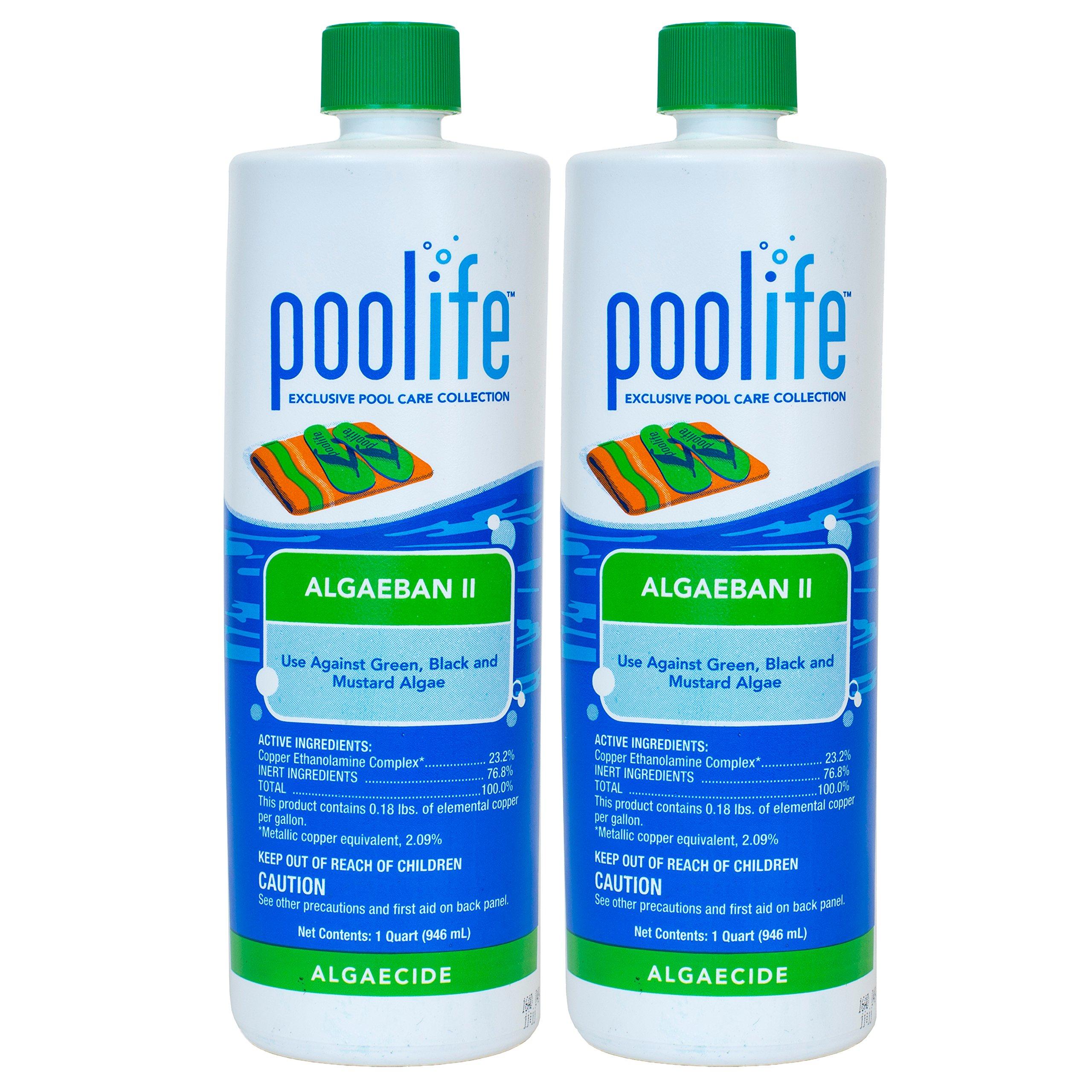 poolife Algae Ban 2 (1 qt) (2 Pack) by POOLIFE
