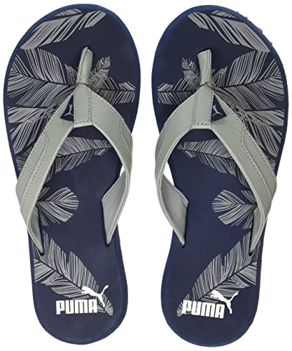 f56663a1f4e8 Puma Unisex Wrens Graphic Idp Quarry-Blue Depths Sneakers - 11 UK India (