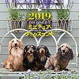 2019年大判カレンダー ミニチュア・ダックスフンド