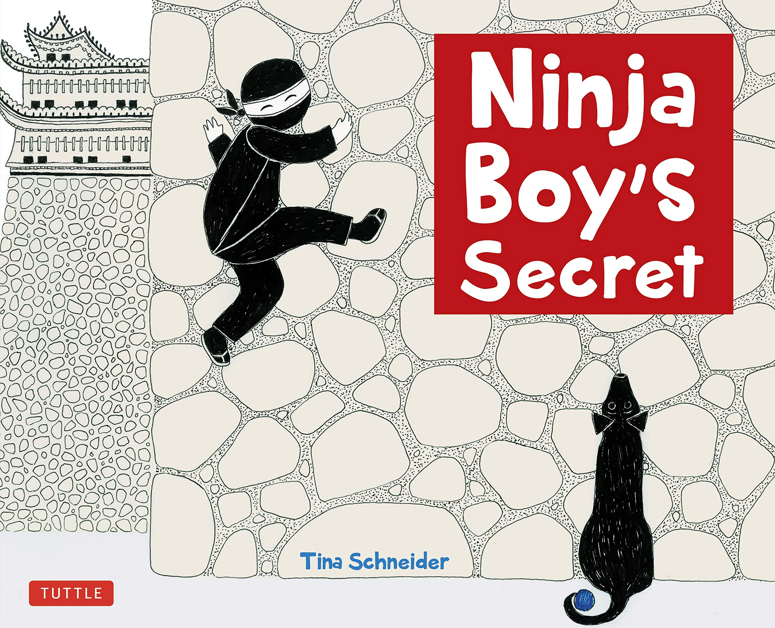 Ninja Boys Secret: Amazon.es: Tina Schneider: Libros en ...