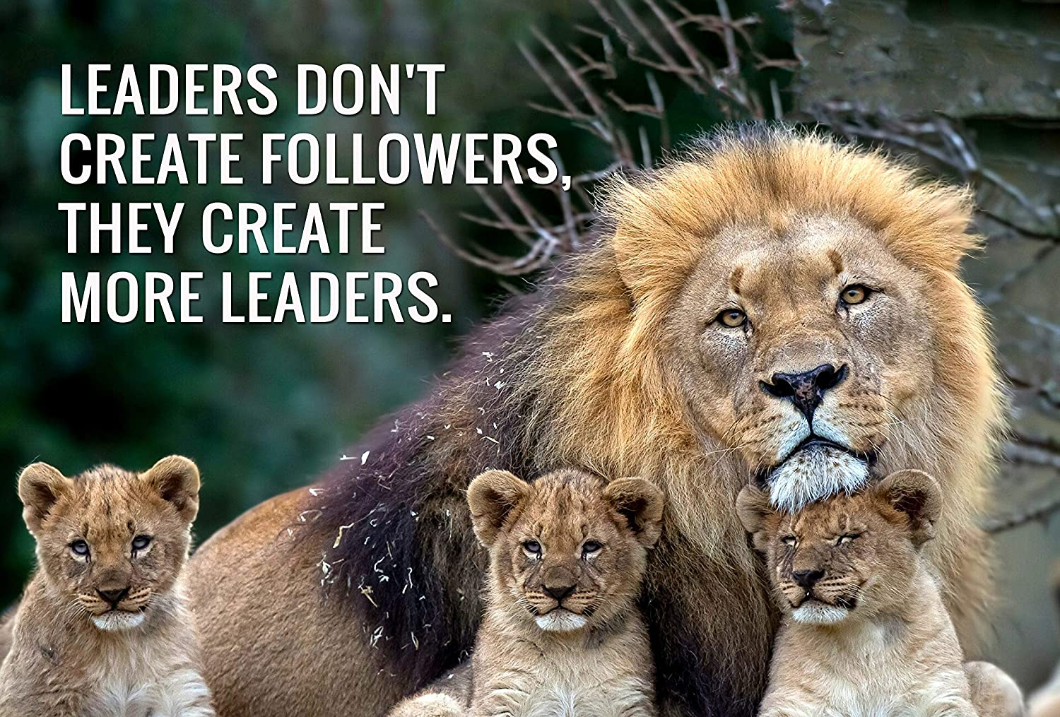 Tallenge Leaders Dont Create Followers They Create More Leaders Business Leadership Inspirational Quote Tom Peters Tallenge Office Motivational Poster Small Poster Paper 12 X 17 Inches Multicolour Amazon In Home Kitchen