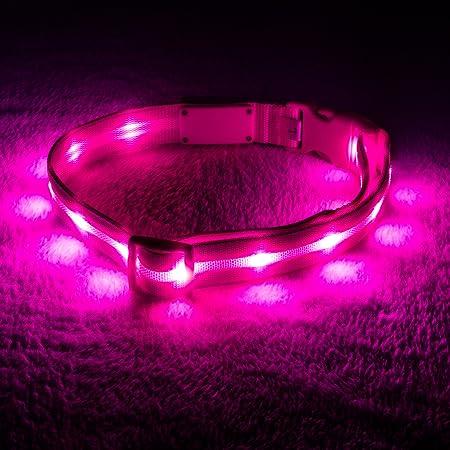 Blazin' Safety LED Dog Collar