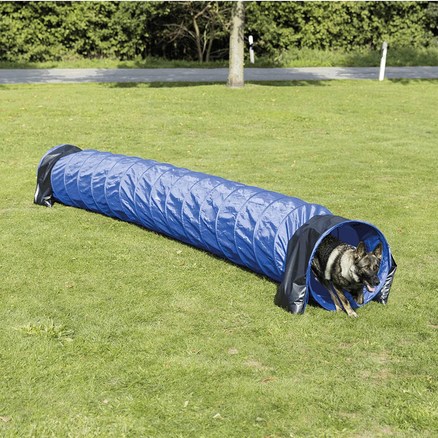 Trixie 3211 Pet Products Agility Basic Tunnel, Large, bluee