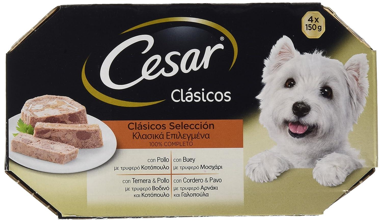 Tarrina para Perros Clásicos Pollo - [Pack de 24]: Amazon.es: Productos para mascotas