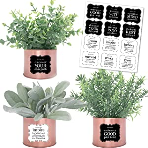 KOYAIRE Set of 3 Rose Gold Desk Accessories for Women Office; Eucalyptus, Rosemary, Lamb's Ear Small Fake Plants; Rose Gold Room Decor for Women; Faux Plants Indoor; Home Office Desk Accessories