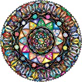 Bgraamiens Puzzle-Mandada Fantasy-1000 Pieces Round Puzzle Color Challenge Jigsaw Puzzles for Adults and Kids